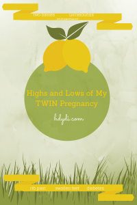 Highs and Lows of My Twin Pregnancy from hdydi.com