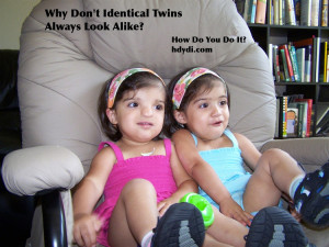 Why Don't Identical Twins Always Look Alike? from hdydi.com