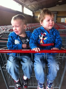 Twin boys crying in a two-seater shopping cart: Grocery Shopping with Multiples from hdydi.blog