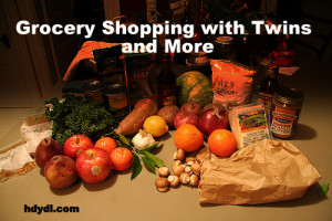 Grocery Shopping with Twins and More from hdydi.com