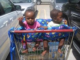 Twins in a shopping cart: Grocery Shopping with Multiples from hdydi.com