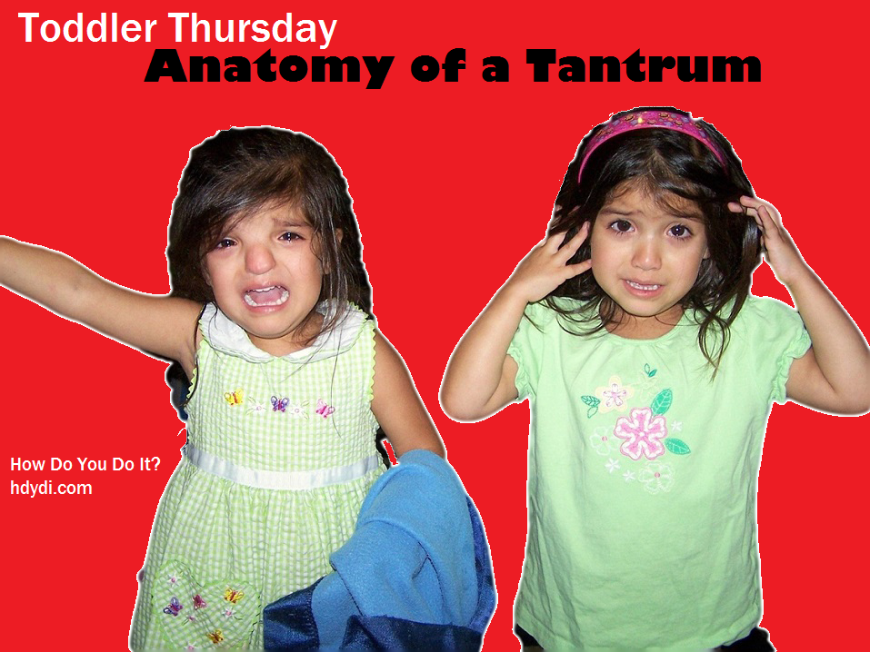 Anatomy of a Tantrum: What a tantrum really looks like and how to handle it