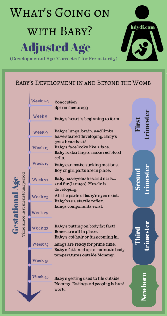Human babies develop in a predictable fashion, regardless of when they exit mom's womb.