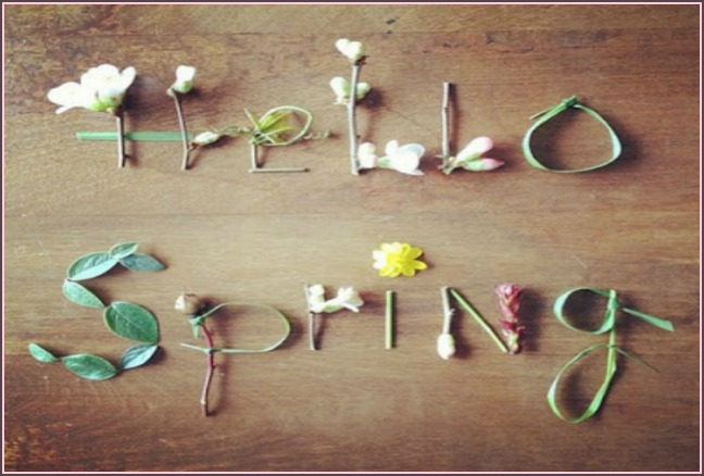 5 spring activities for parents and kids to share! from A Lavender Life