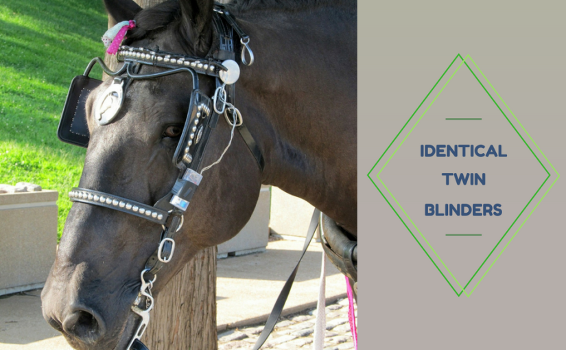 Identical twin blinders